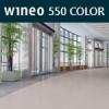 550 Color