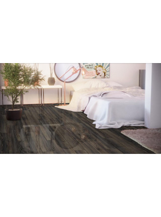 Canyon Black Oak D3686